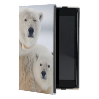 USA, Alaska, North Slope, 1002 Area 3 Case For iPad Mini