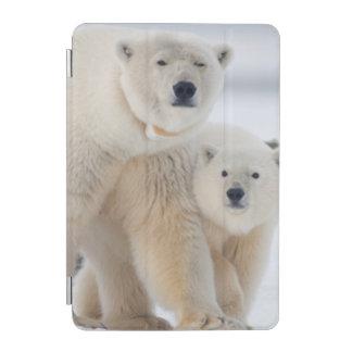 USA, Alaska, North Slope, 1002 Area 3 iPad Mini Cover