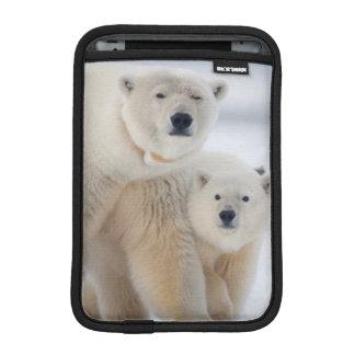 USA, Alaska, North Slope, 1002 Area 3 iPad Mini Sleeve