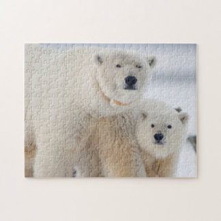 USA, Alaska, North Slope, 1002 Area 3 Jigsaw Puzzle