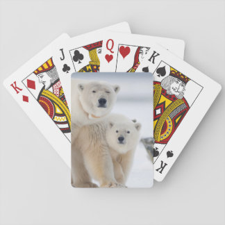 USA, Alaska, North Slope, 1002 Area 3 Playing Cards