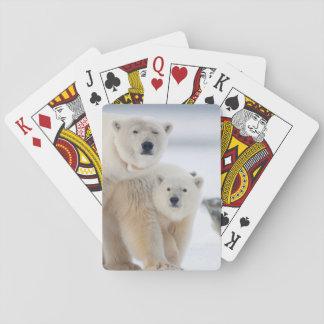 USA, Alaska, North Slope, 1002 Area 3 Poker Deck