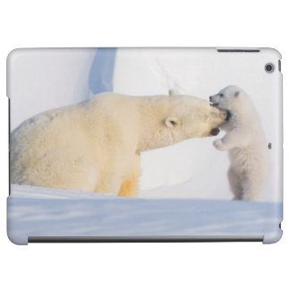 USA, Alaska, North Slope, 1002 Area 4 iPad Air Case