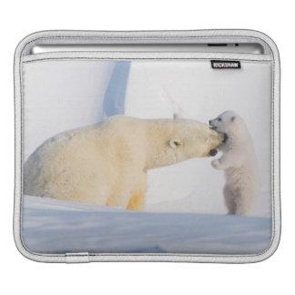 USA, Alaska, North Slope, 1002 Area 4 iPad Sleeve