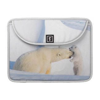 USA, Alaska, North Slope, 1002 Area 4 MacBook Pro Sleeves