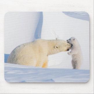 USA, Alaska, North Slope, 1002 Area 4 Mouse Pad