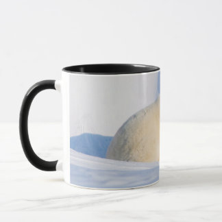 USA, Alaska, North Slope, 1002 Area 4 Mug