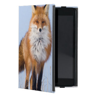USA, Alaska, North Slope, 1002 Area Cover For iPad Mini