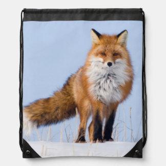 USA, Alaska, North Slope, 1002 Area Drawstring Bag