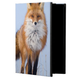 USA, Alaska, North Slope, 1002 Area iPad Air Cover