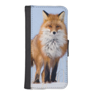 USA, Alaska, North Slope, 1002 Area iPhone SE/5/5s Wallet Case