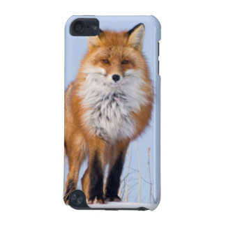 USA, Alaska, North Slope, 1002 Area iPod Touch (5th Generation) Cover