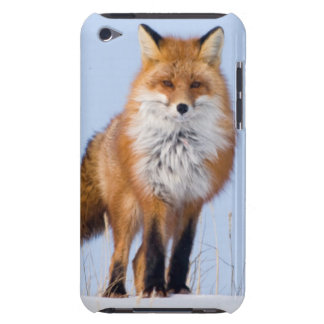 USA, Alaska, North Slope, 1002 Area iPod Touch Cases