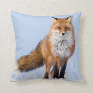 USA, Alaska, North Slope, 1002 Area Throw Pillow