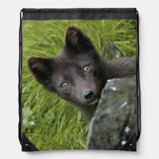 USA, Alaska, Pribilof Islands, St Paul. Blue Drawstring Bag