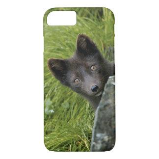 USA, Alaska, Pribilof Islands, St Paul. Blue iPhone 8/7 Case