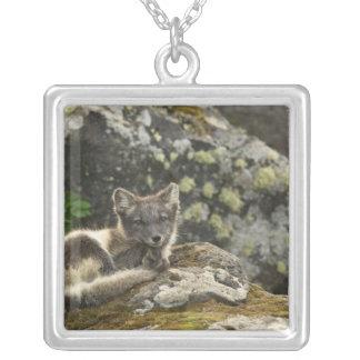 USA, Alaska, Pribilof Islands, St Paul. Blue Square Pendant Necklace