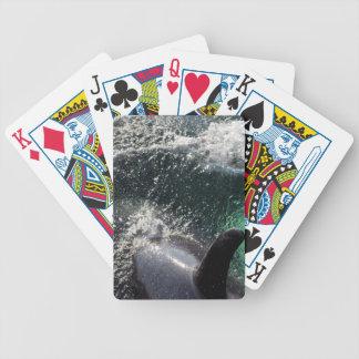 USA, Alaska, Tenakee Springs. Orca Poker Deck