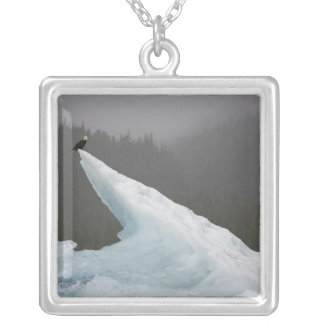 USA, Alaska, Tongass National Forest, Bald Silver Plated Necklace