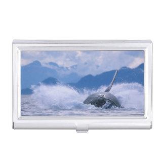 USA, Alaska, Tongass National Forest, Humpback 4 Business Card Holder