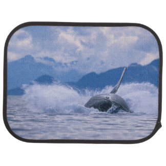 USA, Alaska, Tongass National Forest, Humpback 4 Car Mat