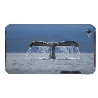 USA, Alaska, Tongass National Forest, Humpback iPod Touch Case