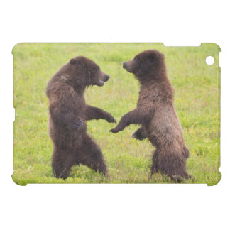 USA, Alaska, Tongass National Forest, Stan Price iPad Mini Covers