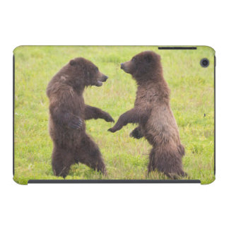 USA, Alaska, Tongass National Forest, Stan Price iPad Mini Retina Case