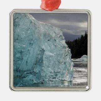 USA, Alaska, Tongass National Forest, Tracy 2 Christmas Ornament