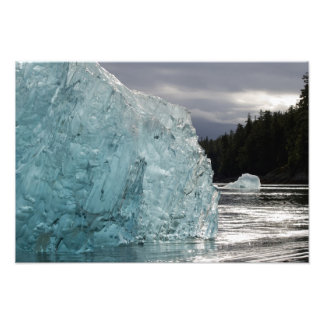 USA, Alaska, Tongass National Forest, Tracy 2 Photo Print