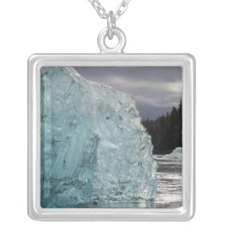USA, Alaska, Tongass National Forest, Tracy 2 Silver Plated Necklace