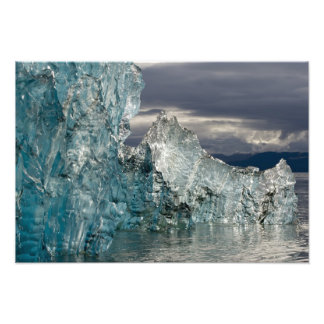 USA, Alaska, Tongass National Forest, Tracy 3 Art Photo