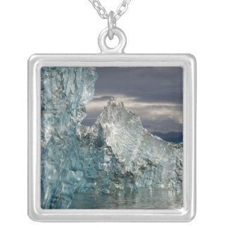 USA, Alaska, Tongass National Forest, Tracy 3 Silver Plated Necklace