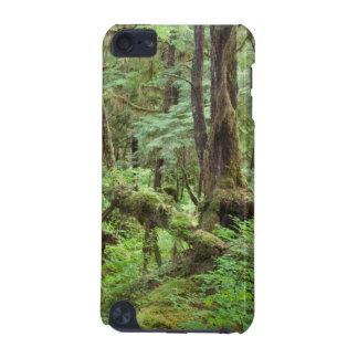 USA, Alaska. Verdant Rainforest In Springtime iPod Touch 5G Case
