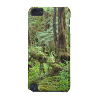 USA, Alaska. Verdant Rainforest In Springtime iPod Touch (5th Generation) Case