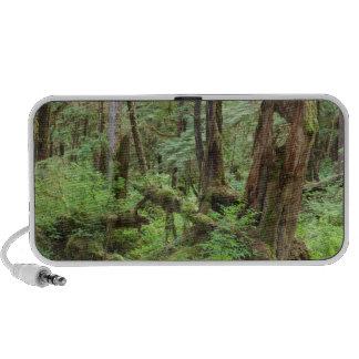USA, Alaska. Verdant Rainforest In Springtime Travelling Speaker