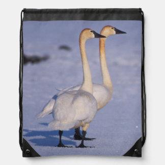 USA, Alaska, whistling swan adults, central Drawstring Bag