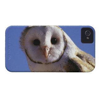 USA, Arizona, Arizona-Sonara Desert Museum. Barn iPhone 4 Case-Mate Cases