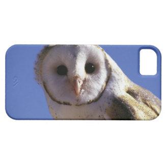 USA, Arizona, Arizona-Sonara Desert Museum. Barn iPhone 5 Cases
