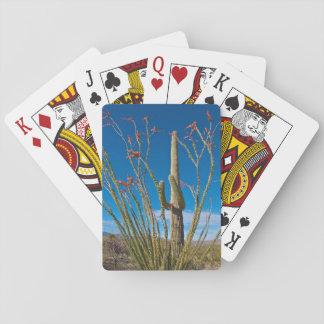 USA, Arizona. Cactus In Saguaro National Park Playing Cards