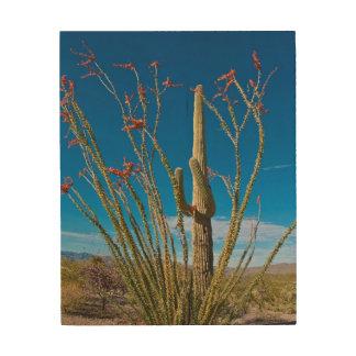 USA, Arizona. Cactus In Saguaro National Park Wood Print