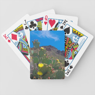 USA, Arizona. Cactus In The Hills Bicycle Playing Cards
