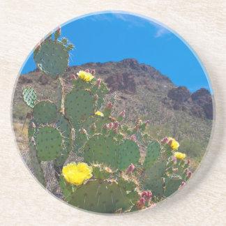 USA, Arizona. Cactus In The Hills Coaster