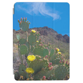 USA, Arizona. Cactus In The Hills iPad Air Cover
