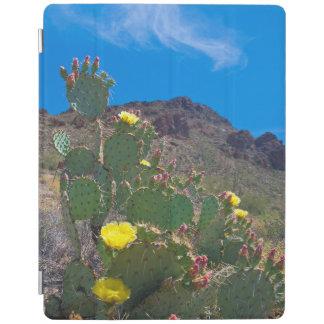 USA, Arizona. Cactus In The Hills iPad Cover