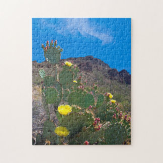 USA, Arizona. Cactus In The Hills Jigsaw Puzzle