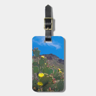 USA, Arizona. Cactus In The Hills Luggage Tag