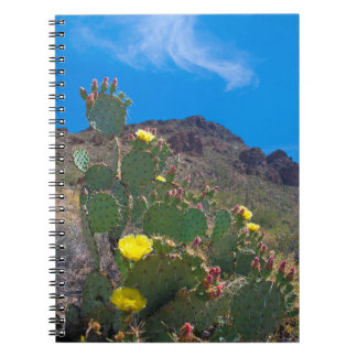 USA, Arizona. Cactus In The Hills Notebook