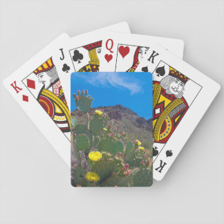 USA, Arizona. Cactus In The Hills Playing Cards