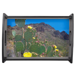 USA, Arizona. Cactus In The Hills Serving Tray